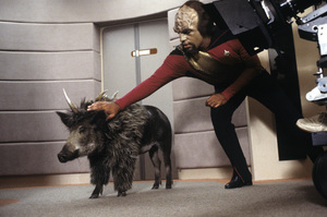 """Star Trek: The Next Generation""Michael Dorn1987 © 1987 Gene Trindl - Image 5115_0246"