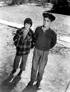 """To Kill A Mockingbird""Mary Badham, Phillip Alford1963 Universal - Image 5344_0003"