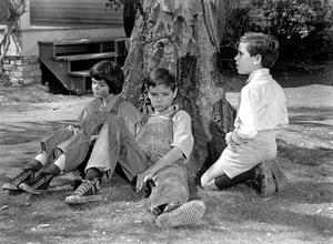 """To Kill A Mockingbird""Mary Badham, Phillip Alford1963 Universal - Image 5344_0004"