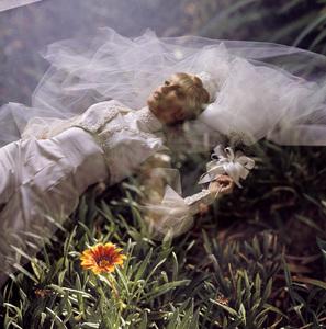 """I Dream of Jeannie"" Barbara Eden 1969 © 1978 Ken Whitmore - Image 5357_0230"