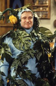 """Mork & Mindy""Robin Williams1982© 1982 David Sutton - Image 5414_0043"