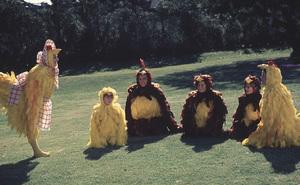 """Partridge Family, The""Shirley Jones,Brian Foreter,David Cassidy ,Danny Bonaduce,Suzanne Crough,Susan Dey1973 ABC**H.L. - Image 5418_0030"