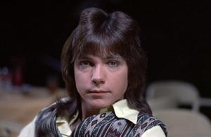 """The Partridge Family""David Cassidycirca 1970s** H.L. - Image 5418_0074"
