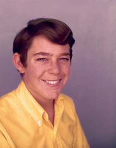 """The Brady Bunch""Barry WilliamsCirca.1970**I.V. - Image 5421_0064"