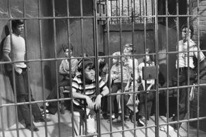 """The Brady Bunch""Maureen McCormick, Barry Williams, Eve Plumb, Susan Olsen, Mike Lookinland, Christopher Knight, Florence Henderson, Ann B. Davis, and Robert Reedcirca 1972 ABC**I.V. - Image 5421_0092"