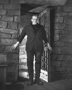 """Frankenstein""Boris Karloff1931 Universal**I.V. - Image 5577_0059"