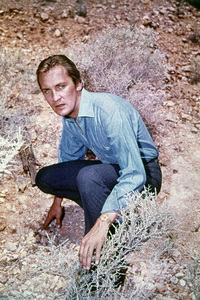 """""""The Invaders""""Roy Thinnes1967 - Image 5635_0001"""