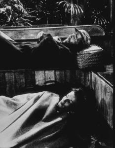"""The African Queen""Humphrey Bogart and Katharine Hepburn1951 UAMPTV - Image 5636_0004"