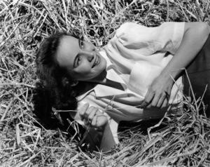 Teresa Wrightcirca 1948 © 1978 Paul Hesse - Image 5665_0011