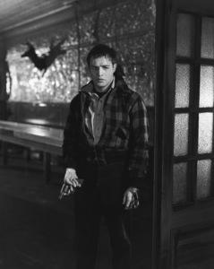 """On the Waterfront""Marlon Brando1954 Columbia**I.V. - Image 5690_0031"