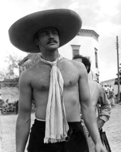 """Viva Zapata""Marlon Brando © 1952 20th Century Fox**I.V. - Image 5696_0007"