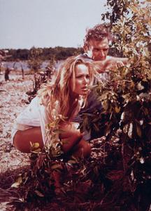 """""""Dr. No"""" Ursula Andress, Sean Connery 1962 UA - Image 5708_0101"""