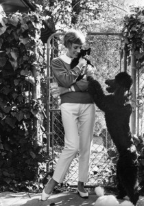 Julie Andrews at home with her pets1967© 1978 Gunther - Image 5722_0145