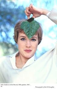 Julie Andrewsin her Beverly Hills garden, 1965. © 1978 Bob Willoughby - Image 5722_0158