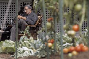 """The Godfather"" Marlon Brando 1972 Paramount Pictures ** I.V. - Image 5746_0052"