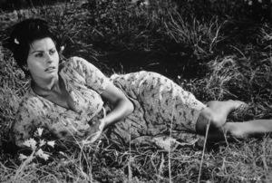 """Sophia Loren in """"Two Women,""""1960. - Image 5752_0001"""