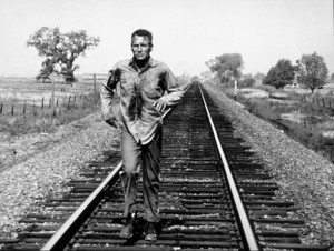 """Cool Hand Luke,""Paul Newman.1967 Warner - Image 5788_0001"