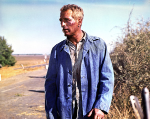 """Cool Hand Luke""Paul Newman1967 Warner Brothers**I.V. - Image 5788_0004"