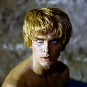 """Satyricon""Martin Potter1969** I.V. - Image 5833_0080"