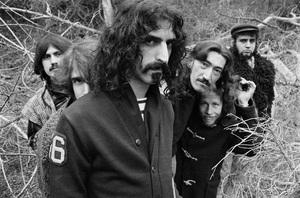 Frank Zappa1967 © 1978 Bruce McBroom - Image 5872_0031