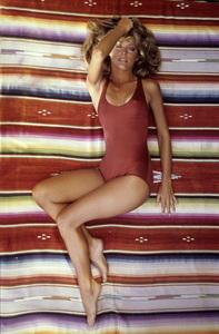 Farrah Fawcett1976 © 1978 Bruce McBroom - Image 5928_0015