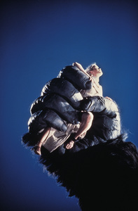 """""""King Kong""""Jessica Lange1976 Paramount - Image 6027_0023"""