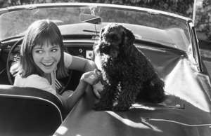 Sally Field at home in her 1965 MGB, C. 1965. © 1978 Gunther - Image 603_29