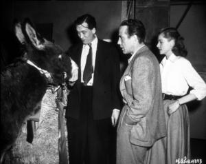 """Key Largo""Director, John Houston, Humphrey Bogart, and Lauren Bacall1948 Warner Bros.Photo by Mac JulianMPTV - Image 6037_0010"