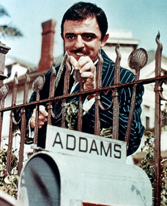 """The Addams Family""John Astincirca 1965 - Image 6068_0003"