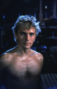"""""""Billy Budd"""" Terence Stamp 1962 © 1978 Sanford Roth / A.M.P.A.S. - Image 6255_0002"""