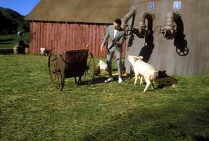 """""""Big Top Pee-Wee""""Paul  Reubens1988Photo by Bud Gray - Image 6257_0035"""