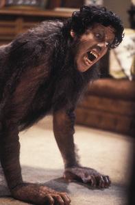 """American Werewolf In London, An""David Naughton1981 Universal © 1981 Bob Willoughby - Image 6355_0020"