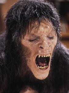 """American Werewolf In London, An""David Naughton1981 Universal © 1981 Bob Willoughby - Image 6355_0022"