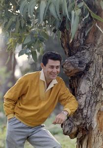 Eddie Fishercirca 1960 © 1978 Gene Howard - Image 7289_0019