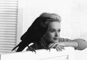 "Tippi Hedren during the making of ""The Birds"" 1963 © 1978 John Engstead - Image 7507_0027"