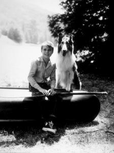 """Lassie""Jon Provost & LassieC. 1961 CBSPhoto by Gabi RonaMPTV - Image 7553_0031"