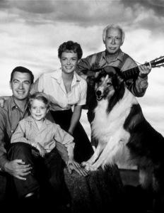 """Lassie""Hugh Reilly, June Lockhart, Jon Provost, LassieC. 1959 CBSPhoto by Gabi RonaMPTV - Image 7553_0035"