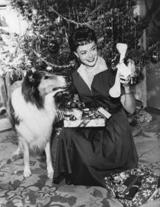 """""""Lassie""""Lassie, June Lockhart circa 1960 - Image 7553_0037"""