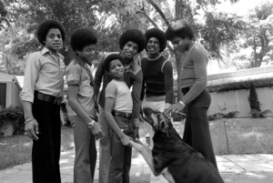 The JacksonsMarlon, Michael, Randy, Jackie, Jermaine, Tito1972 © 1978 Gunther - Image 7670_0030