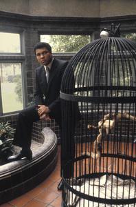 Muhammad Ali at his Los Angeles, California home1979 © 1979 Gunther - Image 7683_0408
