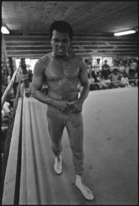 Muhammad Ali1974© 1978 Peter Angelo Simon - Image 7683_0521