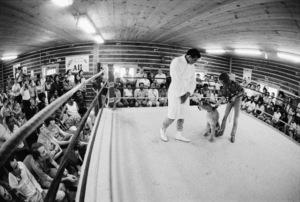 Muhammad Ali, stage magician Doug Henning1974© 1978 Peter Angelo Simon - Image 7683_0560