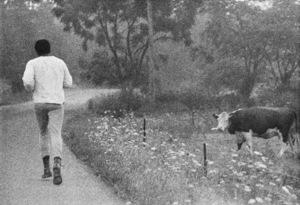 Muhammad Ali1974© 1978 Peter Angelo Simon - Image 7683_0582