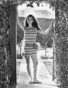 Claudia Cardinale1966 © 1978 Gunther - Image 7921_0017