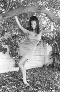 Claudia Cardinale1966 © 1978 Gunther - Image 7921_0018