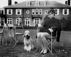 Audrey Hepburn, SABRINA, Paramount Pictures, 1954,**I.V. - Image 8124_0067