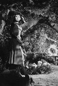 """Audrey Hepburn on the set of """"Sabrina""""1953© 2007 Mark Shaw - Image 8124_0113"""