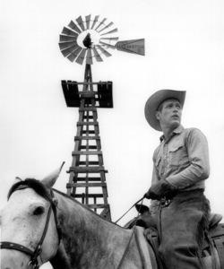 """Hud""Paul Newman1963 Paramount / **I.V. - Image 8302_0005"