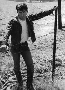 """""""Badlands""""Martin Sheen1973 Warner BrothersPhoto by Bruce McBroom - Image 8626_0006"""