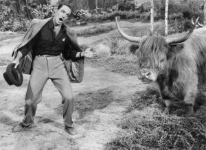 "Gene Kelly in ""Brigadoon""1954 MGM** I.V. - Image 8705_0007"